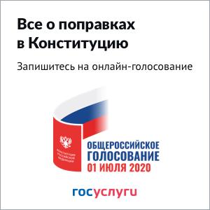 Запишитесь на онлайн-голосование